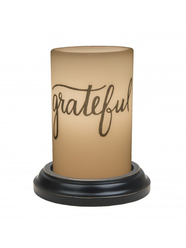 Grateful LastingLite Sleeve
