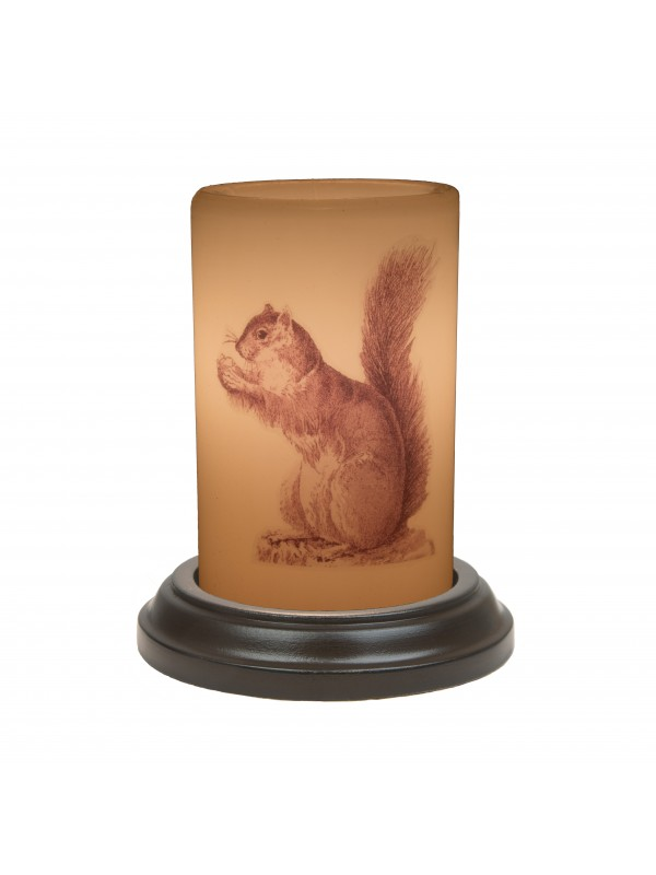 Vintage-Squirrel LastingLite Sleeve